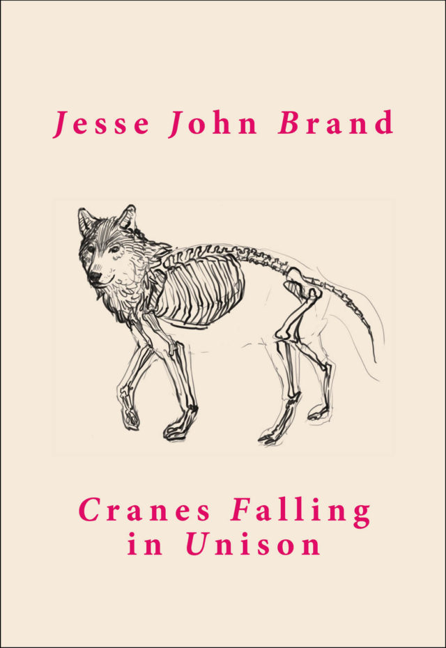Cranes Falling in Unison (illustrated poetry pamphlet)