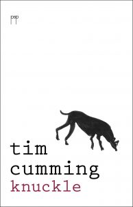 Knuckle (paperback)